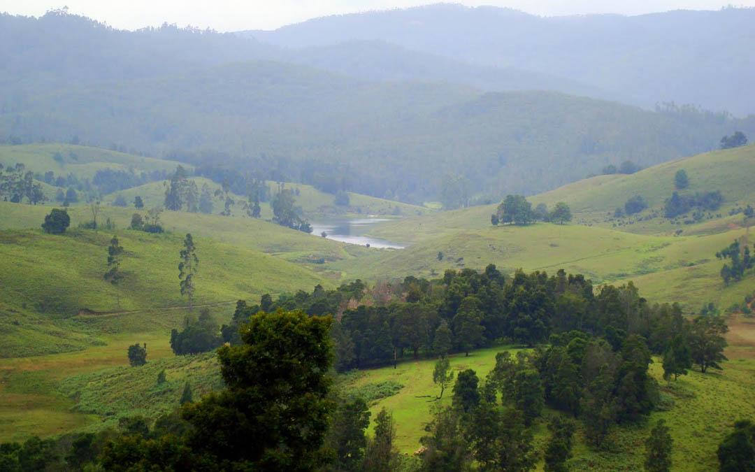Ooty Kodaikanal Packages From Mysore